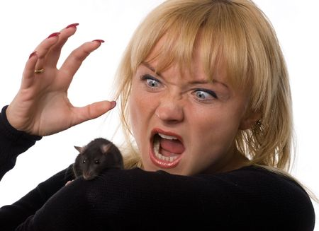 Woman holding little rat in hands, isolated on white Stock Photo - 1962997