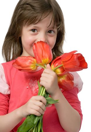little beautiful girl with bouquet of tulips in hands isolated on white photo