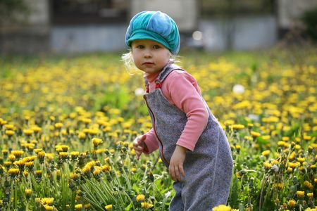 little girl in blue cap on a beautiful summer meadow photo