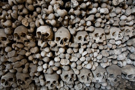 human bones and skulls in ossuary closeup