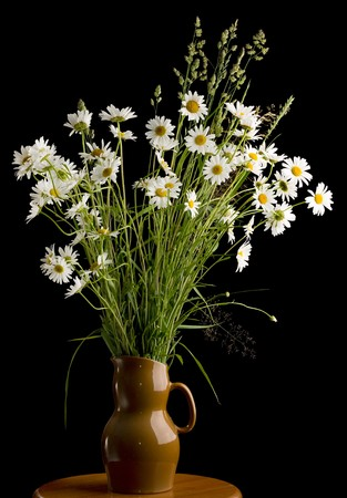 Bouquet of camomiles in a brown ceramic vase, isolated on black photo