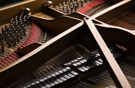 Interior under the lid of grand piano: pins and moderators