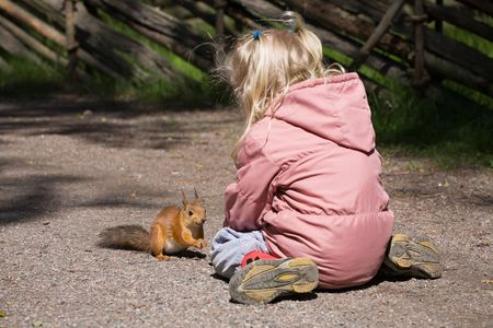 expects: little girl plays with the squirrel, the squirrel expects meal Stock Photo