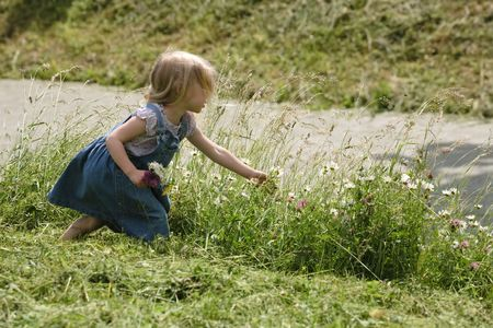 little girl picking wild flowers near the road Stock Photo - 5909843