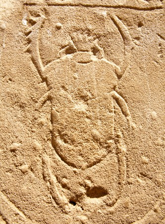 bas-relief of scarab beetle on the wall of ancient temple, Egypt, Luxor, Karnak Temple photo