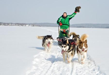 esquimal: hombre en viajes de trineo de perros en todo campo de nieve