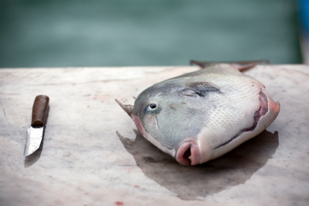 sicilian: closeup of fresh sea fish and a knife lying on market table Stock Photo