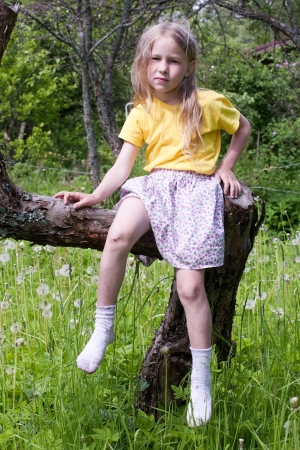 long socks: little girl sitting on the tree and looking at camera on outdoor summer green grass background