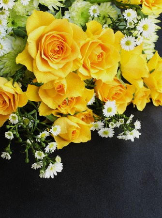 yellow roses on a black background, tinting, selective focus