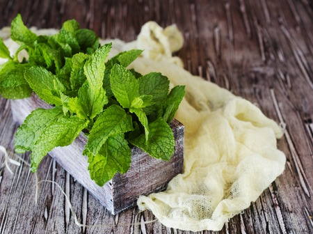 Fresh lemon balm or mint in a small wooden box on a rustic table, selective focus, top view Stock Photo
