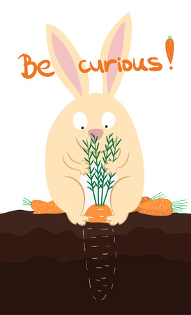 The cute funny rabbit with carrots  Be curious