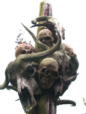 cranium: Skulls on a pole