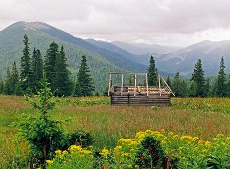 hayloft: Mountainous green meadow with half-disturbed hay-loft (under Grofa mount, Gorgany, Carpathian Mts, Ukraine)