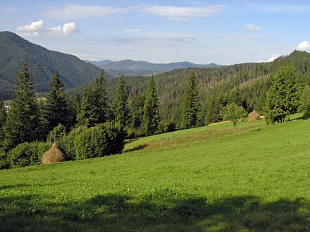 mountainous: Mountainous green meadow with stacks of hay (Slavske village, Carpathian Mts, Ukraine) Stock Photo