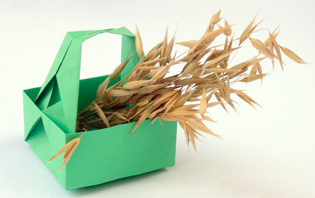 Origami cifra de canasta verde con orejas Foto de archivo - 1423922