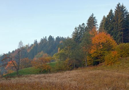 Autumn mountain hill pasture view  (Ukraine, Carpathian Mt) Stock Photo - 1930505