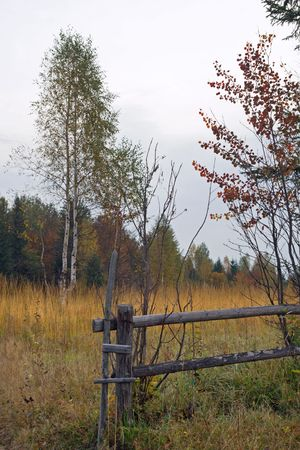 Autumn mountain hill with birch tree and breaking wood fence in front Stock Photo - 1930524