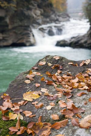 Mountain river waterfall view with autumn leafs on stone in front photo