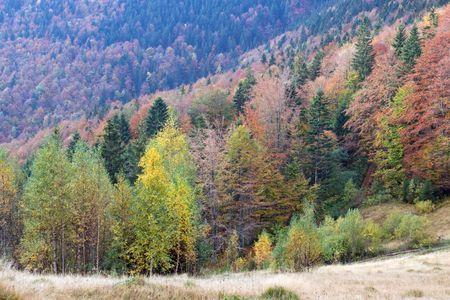 Autumn mountain valley view Stock Photo - 1941967