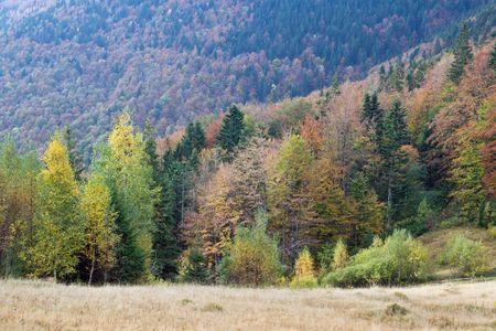 Autumn mountain valley view Stock Photo - 1941965