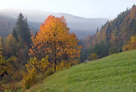 Autumn morning on mountainside near village Stock Photo - 2046724