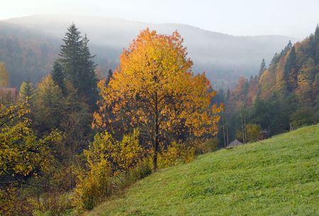 Autumn morning on mountainside near village Stock Photo - 2046720