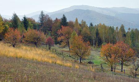 Autumn in mountain garden Stock Photo - 2046725