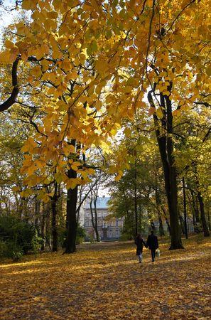 Young couple on golden autumn city park path photo