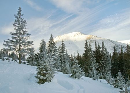 mountainside: Winter morning mountain landscape (Ukraine, Carpathian Mts)