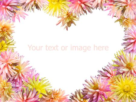 georgina: Pink-yellow Dahlia flowers set mould heart shape frame (isolated on white, 4 to 3 side proportions)