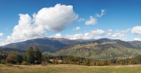 copse: Beautiful autumn morning near Carpathian village outskirts (Carpathian mountain, Ukraine). Four shots stitch image. Stock Photo