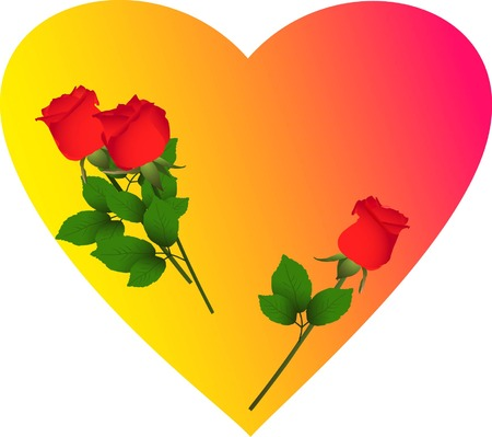 neatness: Heart with three red rose flower (vector illustration) Illustration
