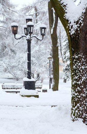 winter (dull snowfall day) city park view with big snow covered trees and lamps