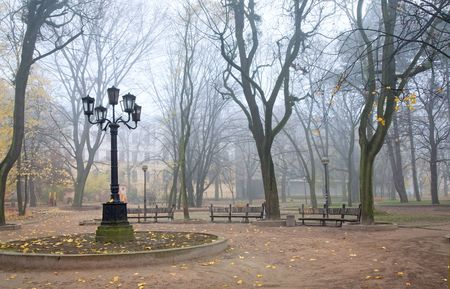 dull: Evening dull foggy autumn city park with lamp and benches Stock Photo