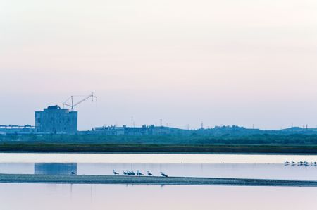 unfinished desertion  energetic block of atomic power plant and  gull flock (near Scholkino Town, Crimea, Ukraine). Stock Photo - 5124423
