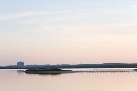 unfinished desertion  energetic block of atomic power plant and  gull flock (near Scholkino Town, Crimea, Ukraine). Stock Photo - 5140169