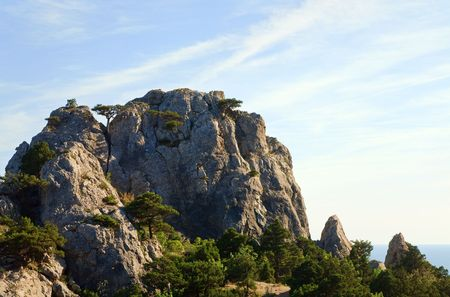 rocky mountain juniper: rock with juniper trees on blue sky background (Novyj Svit reserve, Crimea, Ukraine).