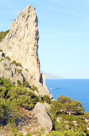 rocky mountain juniper: fanciful rocks on summer coastline of Novyj Svit reserve (Crimea, Ukraine)