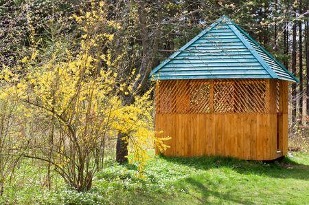 tuinhuis: Blossoming takje van structuur met gele bloemen en summerhouse buurt Stockfoto
