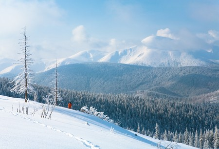 Morning winter calm mountain landscape with beautiful fir trees and photographer on slope (Goverla Mount, Carpathian Mountains, Ukraine) photo