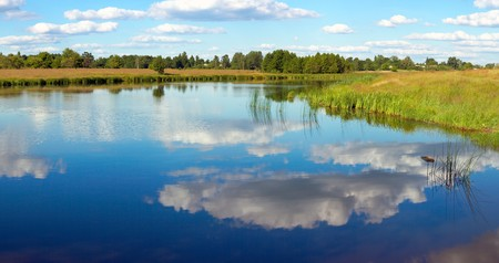 rushy: Summer rushy lake view with clouds reflections. Three shots composite picture.