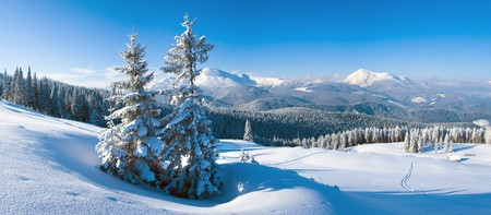 Morning winter calm mountain landscape with fir trees on slope (Goverla Mount, Carpathian Mountains, Ukraine). Four shots stitch image. photo