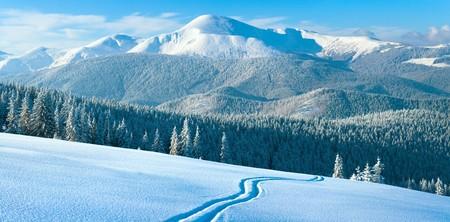 Morning winter calm mountain landscape with coniferous forest on slope (Carpathian Mountains, Ukraine). Four shots stitch image. Stock Photo - 7837041