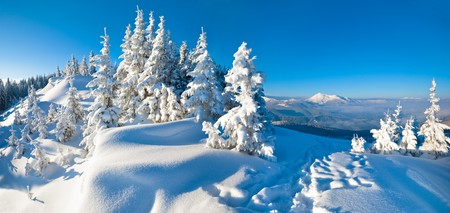 Morning winter calm mountain landscape with fir trees on slope (Carpathian Mountains, Ukraine). Two shots stitch image. photo