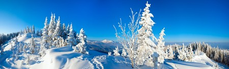 Morning winter calm mountain landscape with fir trees on slope (Carpathian Mountains, Ukraine). Four shots stitch image. photo