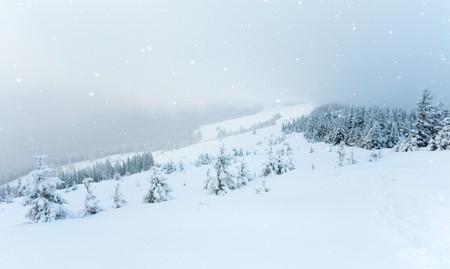 winter calm mountain landscape with snowfall  (Kukol Mount, Carpathian Mountains, Ukraine) Stock Photo - 8144492