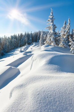 Snowdrifts on winter snow covered mountainside, fir trees on hill top and sun shine in blue sky Stock Photo - 8217293