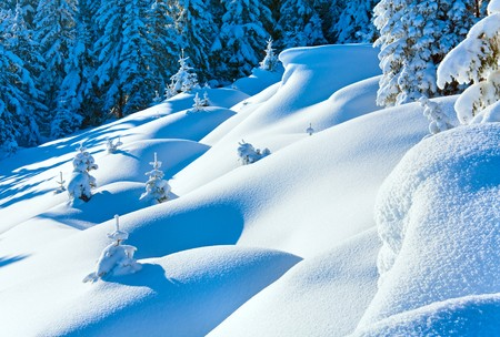 Snowdrifts on winter snow covered mountainside and fir trees on hill top photo