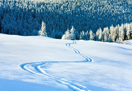 Ski trace on snow surface and winter mountain fir forest behind. photo