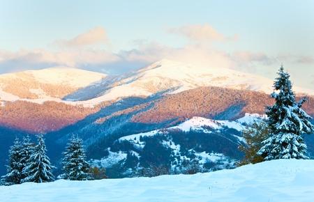 paesaggio montano tramonto con la rima di inverno e la neve abeti coperti (dei Carpazi, Ucraina) Archivio Fotografico - 8911550